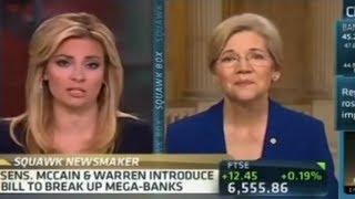 Elizabeth Warren Destroys CNBC Anchors
