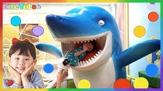 라임이의 뽀로로 키즈카페 테마파크 어린이 놀이터 상어 공풀  Pororo Indoor Playground Fun for Kids   LimeTube & Toy 라임튜브