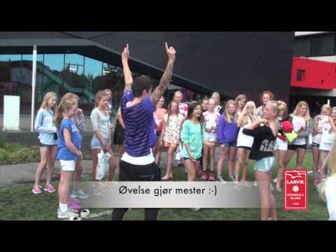 Larvik Håndballskole 2014
