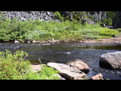 река пулоньга рыбалка