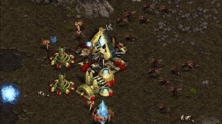 Larva (Z) vs Bisu (P) - 9 Pool vs Forge Fast Expansion ¿Quién ganará? - Starcraft remastered