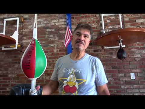 CANELO VS GGG 2 Hall Of Fame Boxer Carlos Palomino Breaks It Down EsNews Boxing