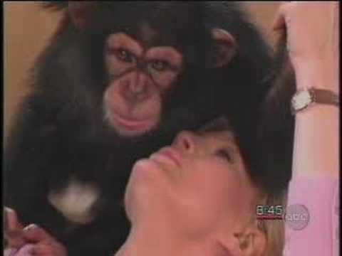 Monkey + Diane Sawyer = FUN!! Video