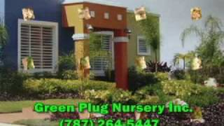 Green Plus Nursery Inc