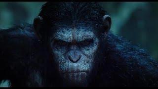 혹성탈출: 반격의 서막 - 1차 공식 예고편 (한글자막)