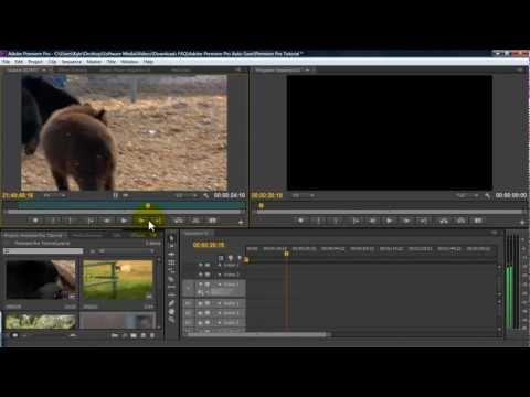 Getting Started in Premiere Pro in 10 Minutes