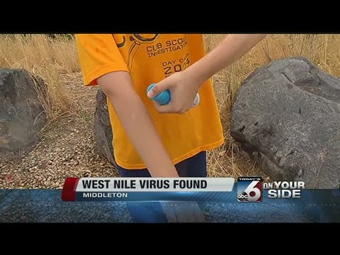 West Nile Virus found
