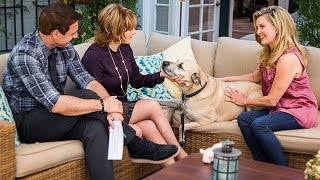 Home & Family - Important Information on Dog Adoption