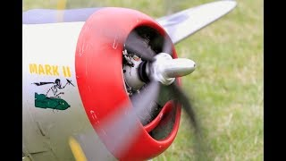 MOKI 250cc CARF RC 1/4 SCALE P-47 THUNDERBOLT - MARK HINTON AT WILLIS WARBIRDS FIGHTER MEET- 2017