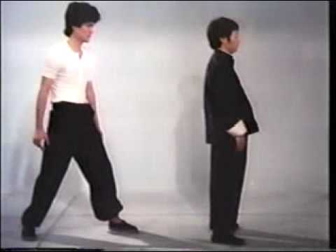 0 Wing Chun Basic Techniques part 3 Chinese Fight Art