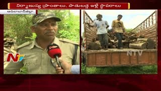 Police Busted Illegal Timber Racket in Adilabad | Seized Hundreds Of Timber Logs | NTV