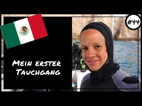 Ich gehe tauchen! | Cabo San Lucas | Mexico | Weltreise | VLOG | #44