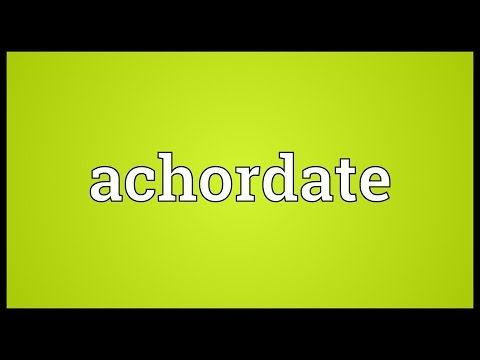 Header of achordate