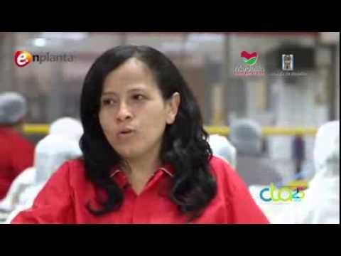 Video Testimonial Resultados Programa enplanta -  2013