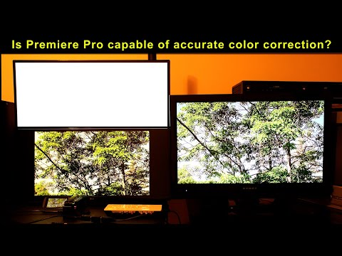 Premiere Pro problems with accurate color correction
