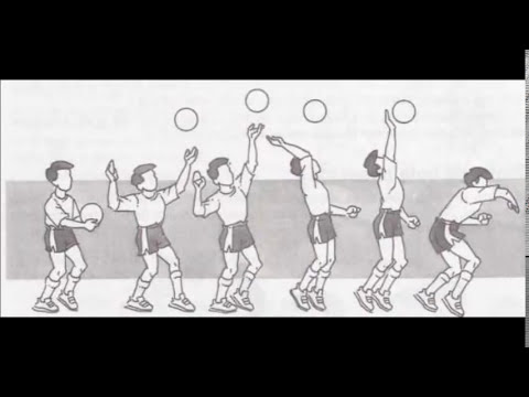 Fundamentos básicos do voleibol