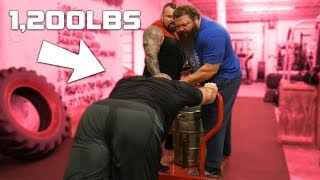 SQUATTING AND SLED PUSH WITH EDDIE HALL & ROBERT OBERST