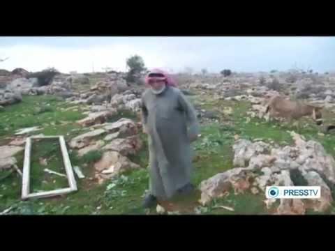 Israeli Settlers Attack Palestinian Village