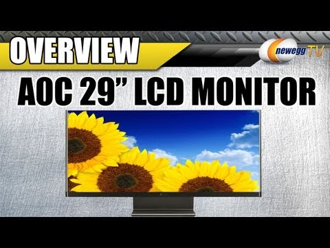 Newegg TV: AOC 29&quot; Widescreen LED Backlight LCD Monitor Overview