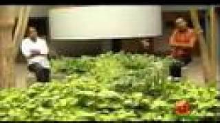 Alex and Zerihun - Neyelegn (Ethiopian Music)