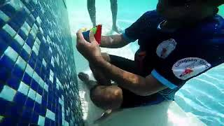 The world's fastest underwater puzzle