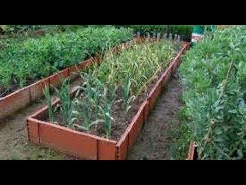 Наногрядка,увеличивает урожайность в разы