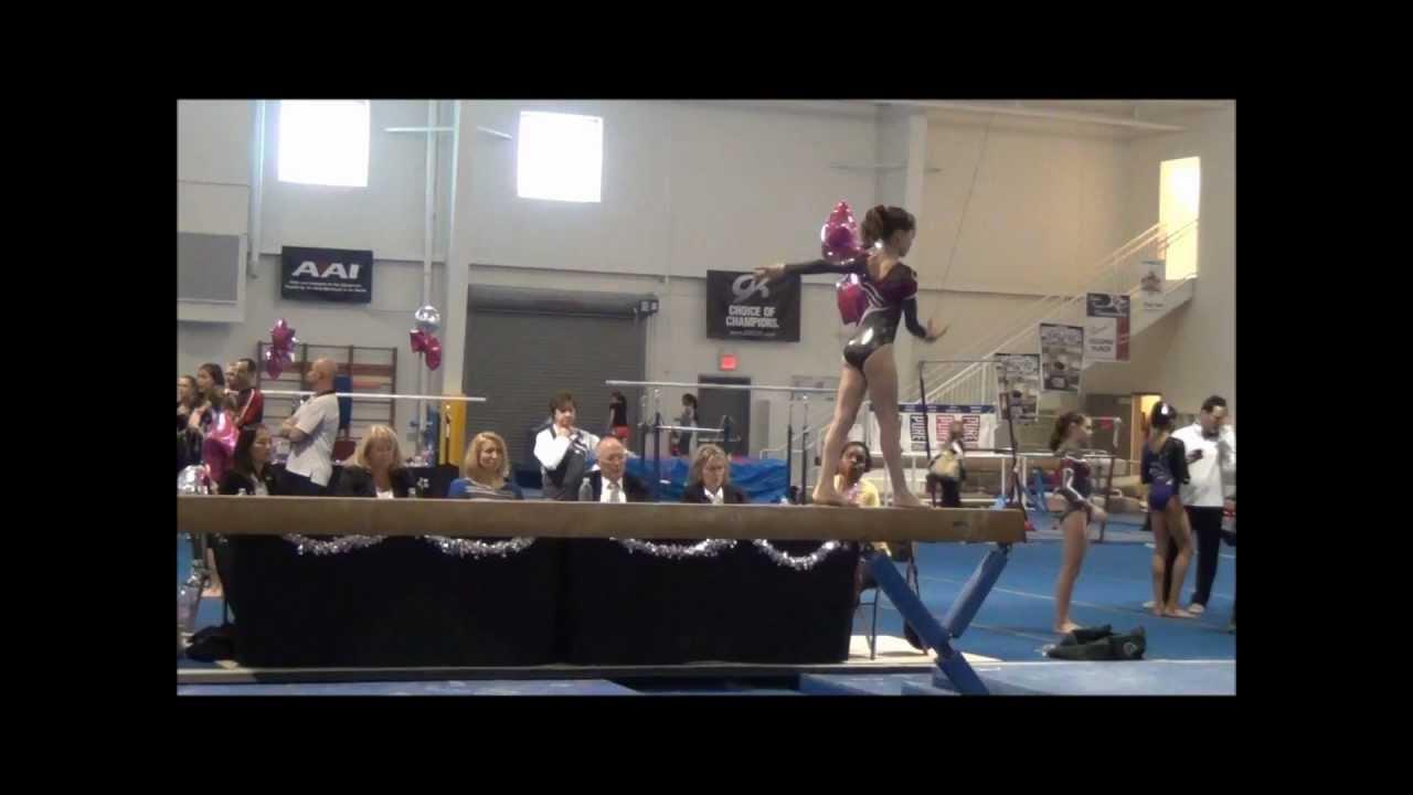 texas level 5 state gymnastics meet