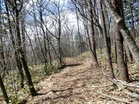 山と畑の手入れを楽しむ~草津温泉のふもとの里山から 里山散歩2