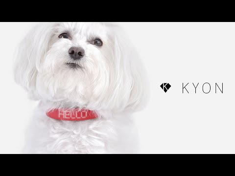 Kyon Pet Tracker: El collar smart para perros