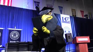 A new Falcon is coming to Lackawanna College!
