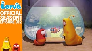 [Official] Aquarium - Larva Season 1 Episode 12
