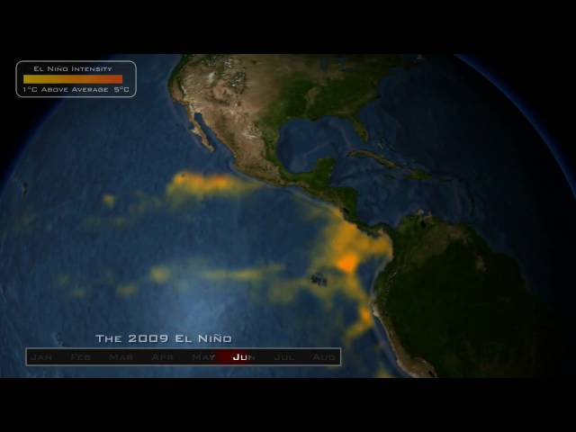 Developing El Nino