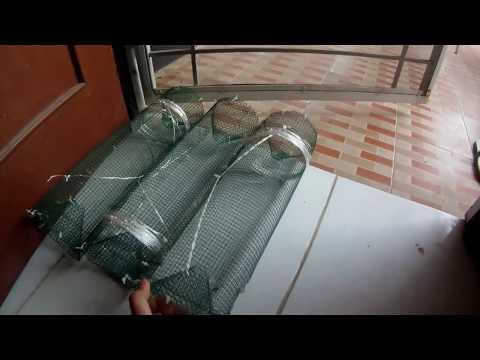 Perangkap Ikan aka fish trap