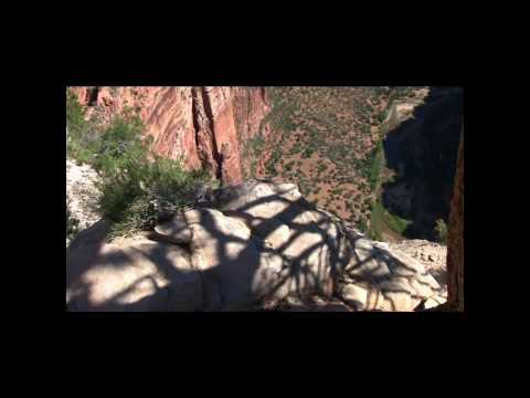 Angels Landing in Zion National Park (and California Condor)