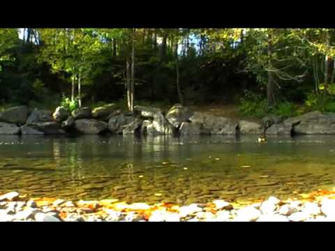 Indian reservation trout fishing waters and camping life for Nc trout fishing regulations