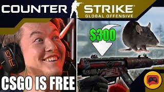 CSGO News | Everything Wrong with Danger Zone BR, New Hidden Skin Patterns and TaZ Beats Virtus Pro
