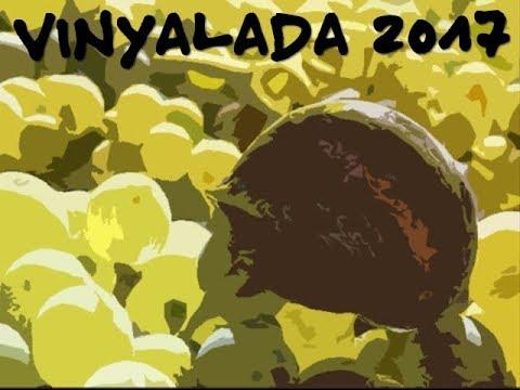 Vinyalada 2017 (sense musica)