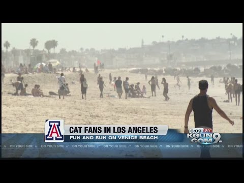 Wildcats, Badgers fans relax at Venice beach before Elite 8 rematch