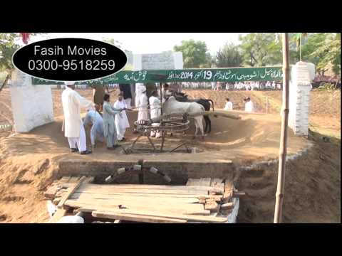 Bull Race Jhelum lota 2014 part 1