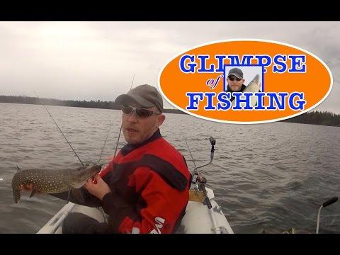 Geddetrolling med shad jigs i klart vand spring fishing ...