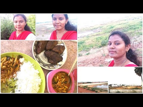 #DIML May31st Vlog/My Native Village/Most memorable Childhood memories/Eating Small fish curry/fry