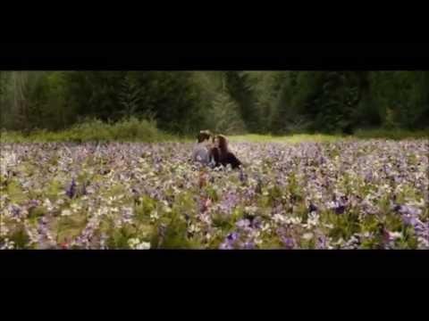 DiVé - Killing my heart (Twilight Saga)