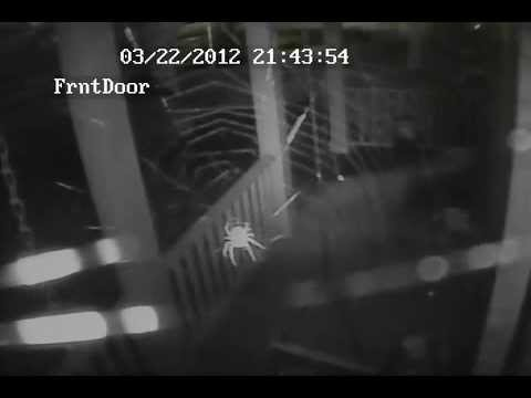 Zmodo Security Camera Night Vision With Audio Hit Amp Run