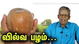 வில்வ பழத்தில் இவ்வளவு நன்மைகளா? | Vilvam Fruit Health Benefits in Tamil