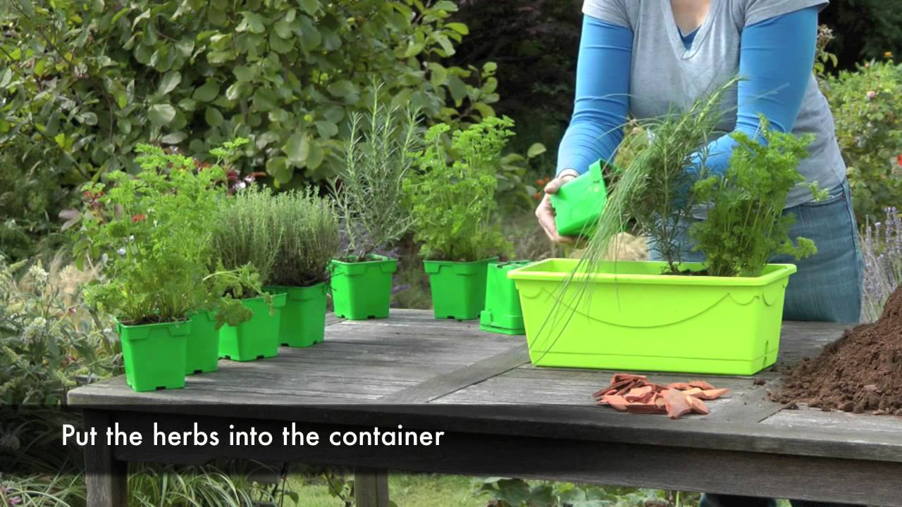 Una jardinera de plantas arom ticas para tu jard n youtube for Plantas de plastico para decoracion