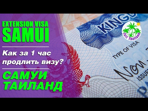Как за один час продлить визу на острове Самуи Таиланд🇹🇭