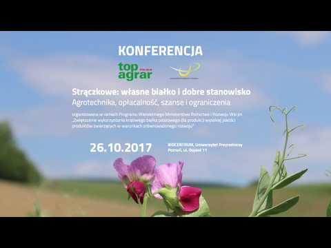Strączkowe: Własne Białko I Dobre Stanowisko - Konferencja W Poznaniu