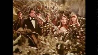 Sergio Mendes Brasil 39 66 Mas Que Nada Promo Audio 1966