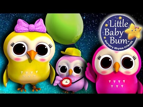 A Wise Old Owl | Nursery Rhymes | By LittleBabyBum