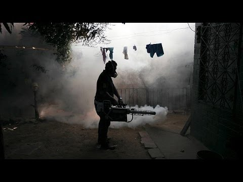 WHO concerned over Zika sexual transmission reports